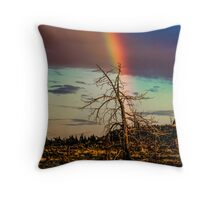 Rainbows-n-old Juniper Throw Pillow