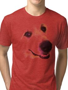 Great Pyrenees Tri-blend T-Shirt