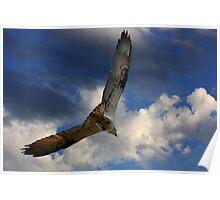 In Full Flight Poster