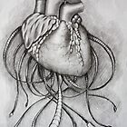my heart by KathrinSh