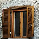 Wooden Shutters by Warren. A. Williams