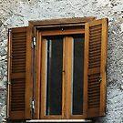 Wooden Shutters by Warren. A. Williams