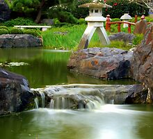 Peaceful Waterfall - Edogawa Japanese Gardens  by sdand