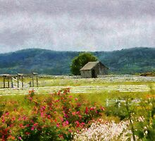 Country - Out in the country  by Mike  Savad