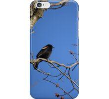 Redwing Blackbird iPhone Case/Skin