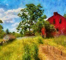 Farm - Where the Farmer lives  by Mike  Savad