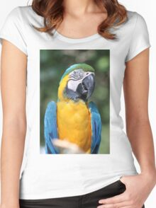 Blue Mc Caw Women's Fitted Scoop T-Shirt