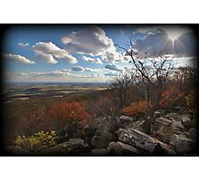 Autumn Knob Burst Photographic Print