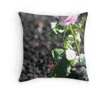 Purple Rose in Vase & Granite Throw Pillow