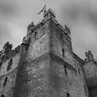Langley Castle by DeePhoto