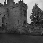 Featherstone Castle by DeePhoto