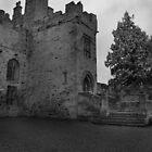 Featherstone Castle by DeePhoto