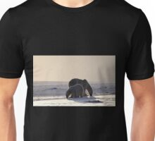 Golden Glow. Polar Bears at Sundown, Churchill, Canada (Please read description) Unisex T-Shirt
