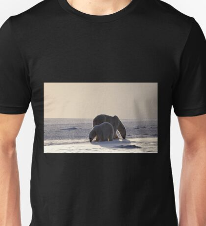 Golden Glow. Polar Bears at Sundown, Churchill, Canada (Please read description) Unisex T-Shirt