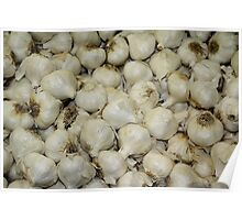 Fresh Produce - Garlic Poster