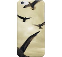 Seagulls At The Beach 3 iPhone Case/Skin