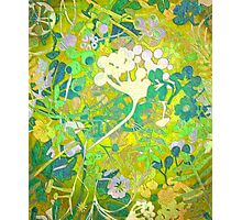 Wacky Retro Floral Abstract Photographic Print
