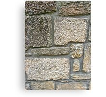 Coquina Blocks Canvas Print