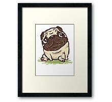 Pug that relaxes Framed Print