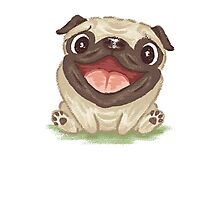 Happy Pug Photographic Print