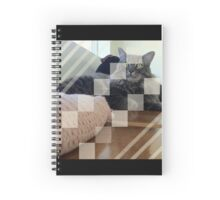 Cat Lines & Squares. Spiral Notebook