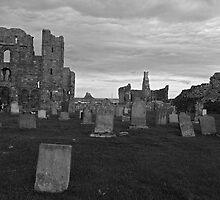 A Permanent View of the Castle by Ryan Davison Crisp