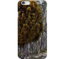 Surrounded By Ghosts  iPhone Case/Skin