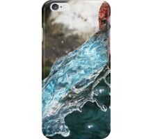 Rusty Spigot iPhone Case/Skin