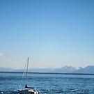A Beautiful Day On The Lake by NancyC