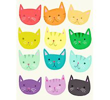 Rainbow Cats - Cute Cats - Colorful Cats  Photographic Print