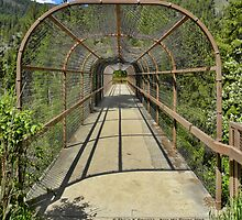 Kootenai Falls Bridge by rocamiadesign
