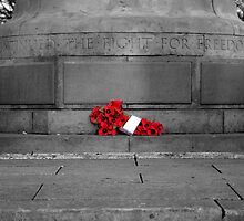 We Will Remember Them by David Brooks