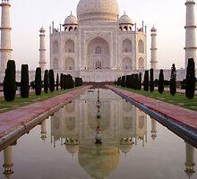 The Taj Mahal by MickC