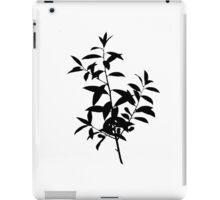Dahoon Holly Brush iPad Case/Skin
