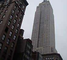 Empire State Building - New York City by waynebolton