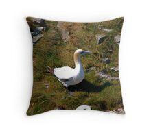 Bempton Cliffs 8 Throw Pillow