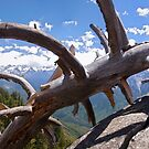 Moro Rock Panorama by Mark Ramstead