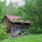 Old Barn by Junebug60