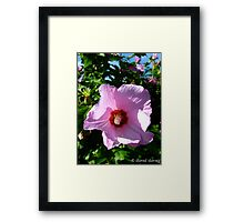 Picture in Purple Framed Print