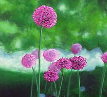 Garlic Chives by ChrisJeffrey