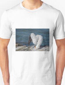 Shy Pelican T-Shirt
