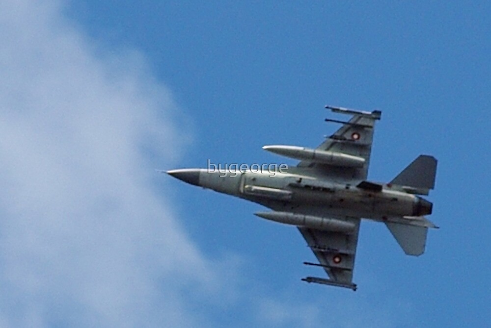 Fighting Falcon by bygeorge