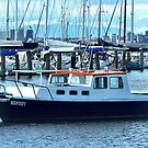Red Roof - Cabin Cruiser moored at Williamstown, Vic. by EdsMum