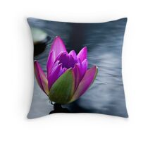 Silken Shimmer Throw Pillow