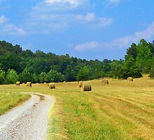 Hay Baling time in Arkansas by Susan Blevins