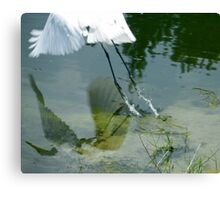 Reflection of an Egret in Flight Canvas Print