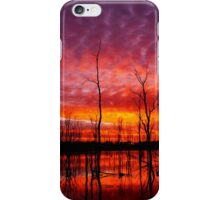 Wooroolin Wetlands iPhone Case/Skin