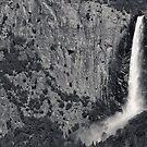 Bridalveil Falls by Phillip M. Burrow