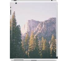 Yosemite iPad Case/Skin