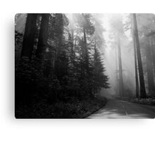 The Road to the Giants Canvas Print